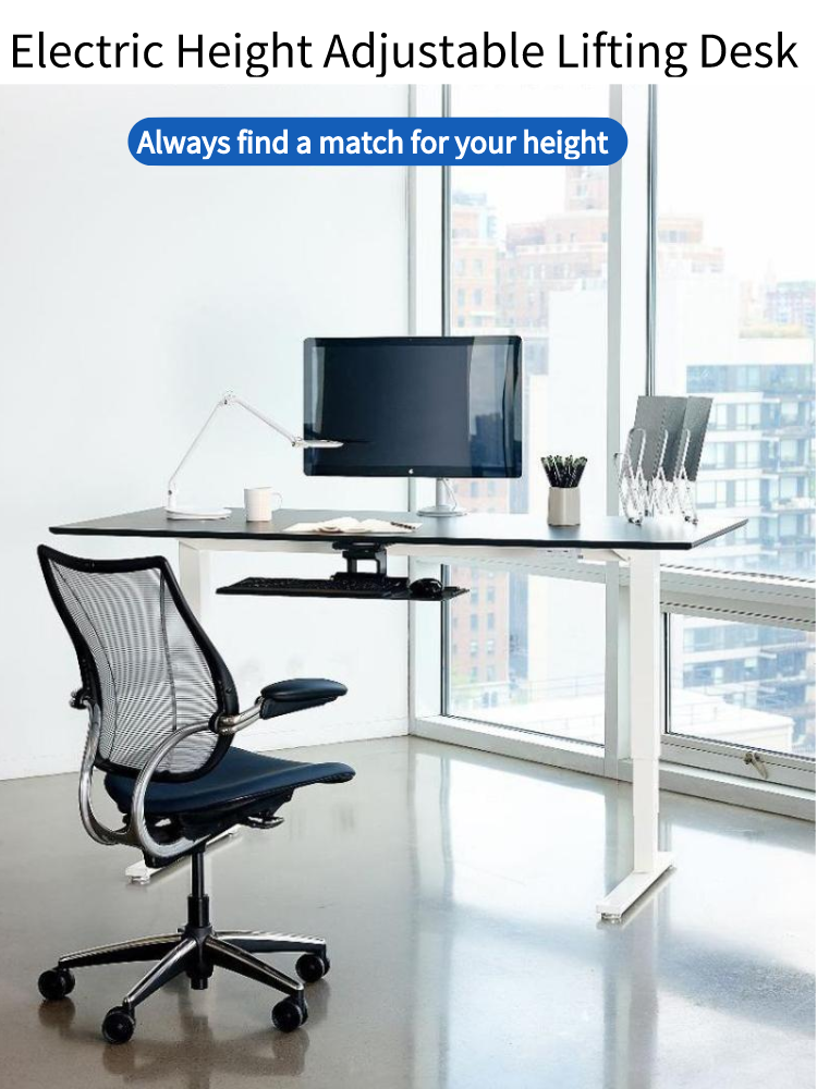 Electric Lifting Office Tables Stand Up Desk 10