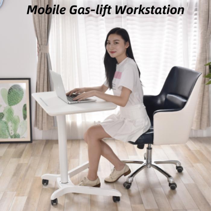 Standing Computer Desk Mobile Workstation 1 1