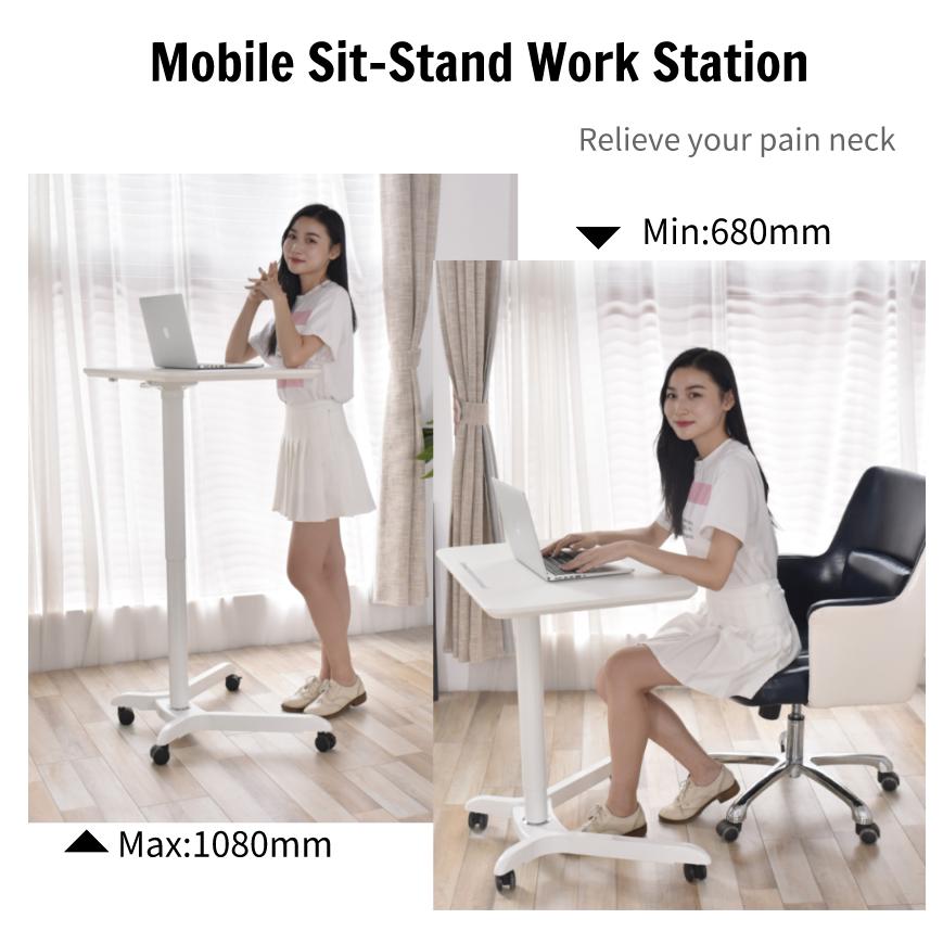 Standing Computer Desk Mobile Workstation 2 1